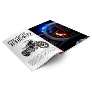 Catálogos e Revistas
